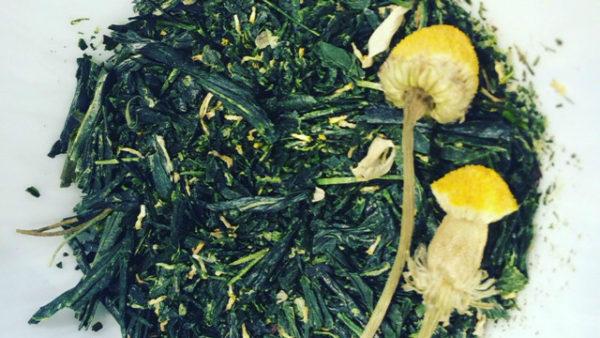 TEA BLEND: GREEN CHAMOMILE TEA (met Sencha)